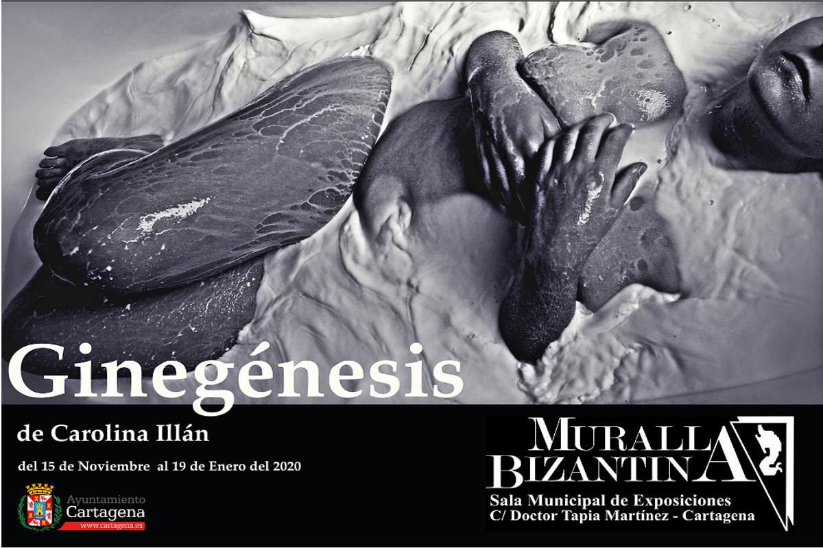EXPOSICION: GINEGÉNESIS Carolina Illán Conesa. Sala Muralla Bizantina